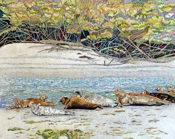 Mad River Seals