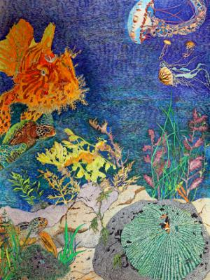 Dragon Jellies & Frogfish