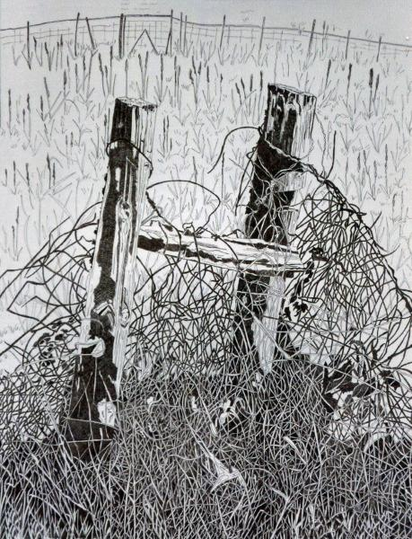 Posts & S Barbwire