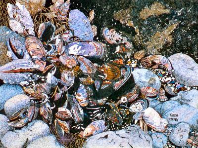 California Mussels